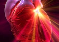 Новая разработка в кардиологии в Израиле