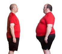 Факты об ожирении